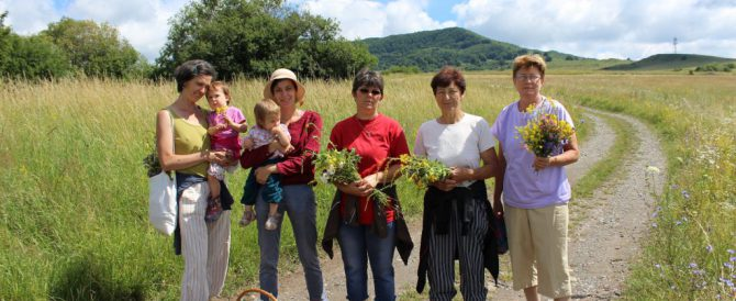 Knowledge transfer in the local communities – Inlăceni